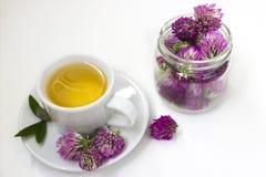 Tisana com as flores do trevo Imagens de Stock Royalty Free