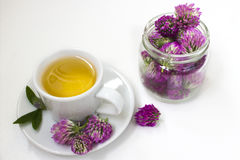 Tisana con i fiori del trifoglio Immagini Stock Libere da Diritti