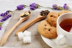 Tisana e cookies Foto de Stock