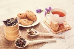 Tisana e cookies Fotos de Stock Royalty Free
