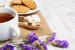 Tisana e cookies Imagem de Stock Royalty Free