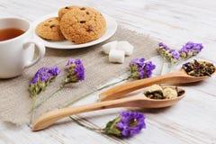 Tisana e cookies Imagem de Stock