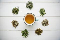 Tisana fragrante e sana fresca in un vetro o in una tazza su una superficie di legno bianca Accanto varie erbe secche di bugia immagini stock libere da diritti