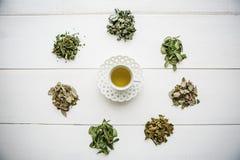 Tisana fragrante e sana fresca in un vetro o in una tazza su una superficie di legno bianca Accanto varie erbe secche di bugia fotografia stock