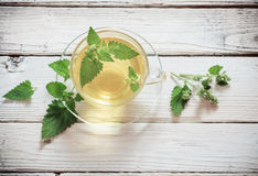 Tisana verde do melissa no copo de vidro fotos de stock royalty free