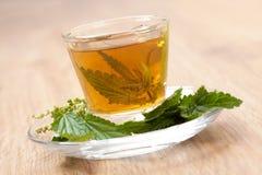 Tisane avec l'ortie cuisante à l'intérieur de la tasse de thé, sur le plancher en bois Photo stock