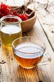 Tisane chaude avec du miel et le viburnum Photographie stock libre de droits