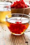 Tisane chaude avec du miel et le viburnum Images stock