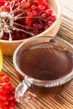 Tisane chaude avec du miel et le viburnum Images libres de droits