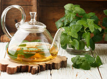 Tisane dans une théière transparente sur la table et les brins du baume et de la menthe de citron frais de MELiSSA Photographie stock