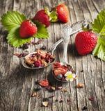 Tisane de Balsamico de fraise Photographie stock