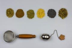 Tisanebestandteile mit Sieben Stockfotos