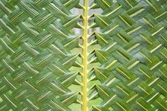 Tissage de modèle des feuilles de noix de coco Images libres de droits