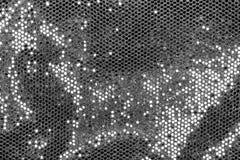 Tissu avec les paillettes argentées Images libres de droits