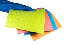 Tissu d'éponge de cellulose dans la main enfilée de gants en caoutchouc bleue plus propre, d'isolement sur le fond blanc photographie stock