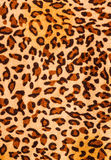 Tissu d'impression de tigre Photo libre de droits