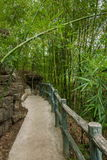 Tissu de bambou de cinq rives Photo libre de droits