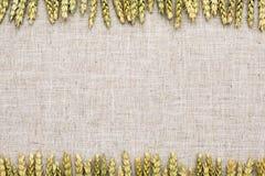 Tissu de fond naturel, de blé et de toile Images libres de droits
