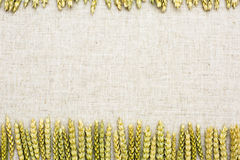 Tissu de fond naturel, de blé et de toile Photographie stock