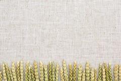 Tissu de fond naturel, de blé et de toile Image stock