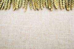 Tissu de fond naturel, de blé et de toile Photographie stock libre de droits