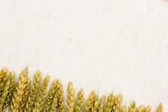 Tissu de fond naturel, de blé et de toile Photo stock
