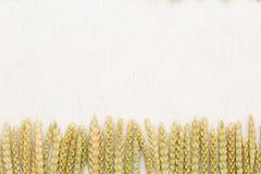 Tissu de fond naturel, de blé et de toile Image libre de droits