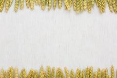 Tissu de fond naturel, de blé et de toile Images stock