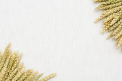 Tissu de fond naturel, de blé et de toile Photos stock