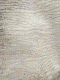 Tissu de l'usine, un fragment de la photo et texture photo stock