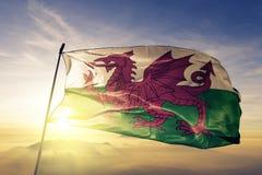 Tissu de tissu de textile de drapeau national du Pays de Galles ondulant sur le dessus illustration stock