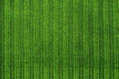 Tissu de texture de couleur verte. Photos libres de droits