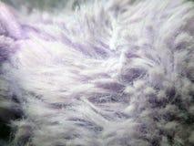 Tissu hirsute pourpre lilas Photographie stock libre de droits