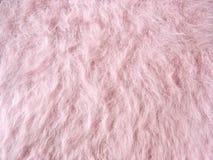 Tissu laineux rose (tissu de laine d'angora) Image libre de droits