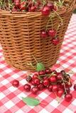 Tissu rouge de pique-nique avec la cerise Photo libre de droits