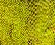 Tissu vert dans la maille Photographie stock libre de droits