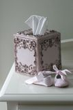 Tissue. A baby girl tissue box and slippers Stock Image