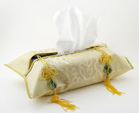 Tissue box. In a decorative case Stock Images