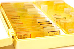 Tissue samples on a slide in a box Stock Images