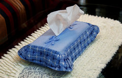 Tissues. In decorated cover in home Royalty Free Stock Photography