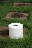 Tissues. White tissue paper on the lawn Royalty Free Stock Photos