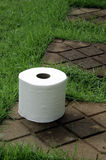 Tissues. White tissue paper on the lawn Stock Image