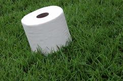 Tissues. White tissue paper in the toilet Stock Photo