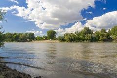 Tisza rzeka przy Szeged Fotografia Stock