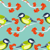 Tit seamless pattern Royalty Free Stock Images