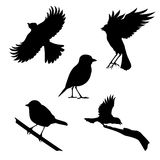 Tit set. Of silhouettes royalty free illustration