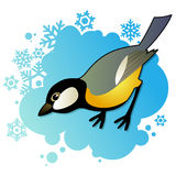 Tit on winter background. Small tit on winter blue background Royalty Free Stock Images