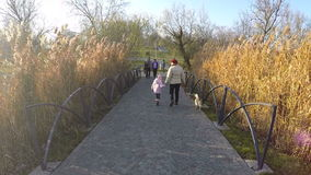 Titaanpark Boekarest Roemenië stock videobeelden