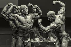 Titanen, de lichaamsbouw Stock Foto's