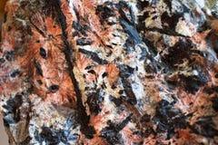 Titanite stellar. Grothite, titanite, stellar, stellate, Nord minerals of cola peninsula Royalty Free Stock Image
